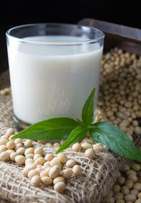 soy milk with soy beans