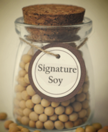 non gmo natto & sprout soybeans